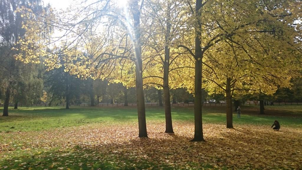hyde-park-autumn-colours