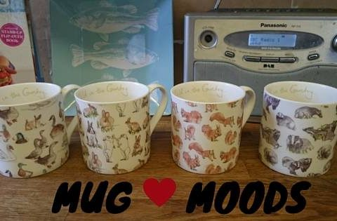 mug-moods-midwifeandlife.com