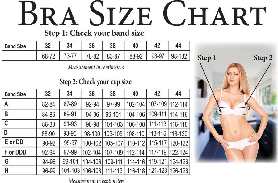 Bra Size Chart  How to Correctly Measure your Bra Size