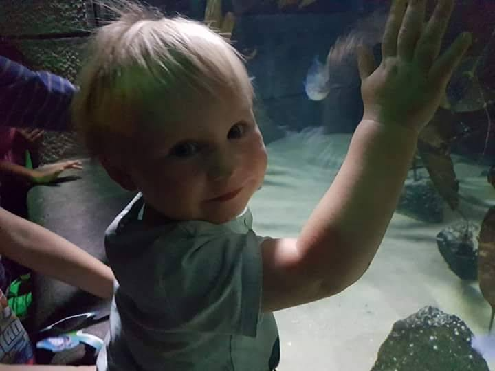 Read all about our day out at London's Sea Life Aquarium
