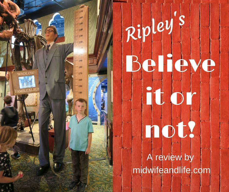 All about our day out to London, and Ripley's Believe it or not. Read and see what we saw.
