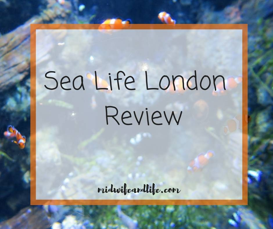 sea-life-london-review-midwifeandlife.com