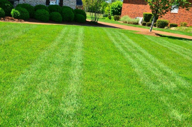 lawn-care-643563_1280
