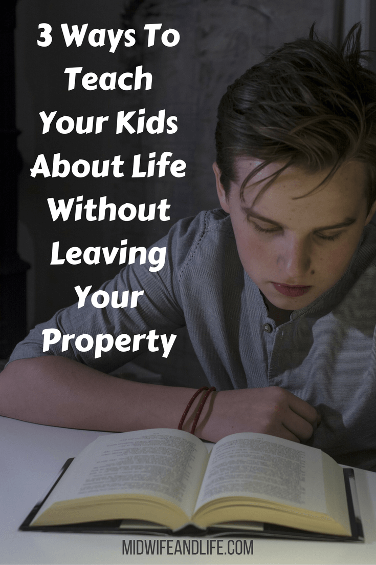 3 Ways To Teach Your Kids About Life Without Leaving Your Property