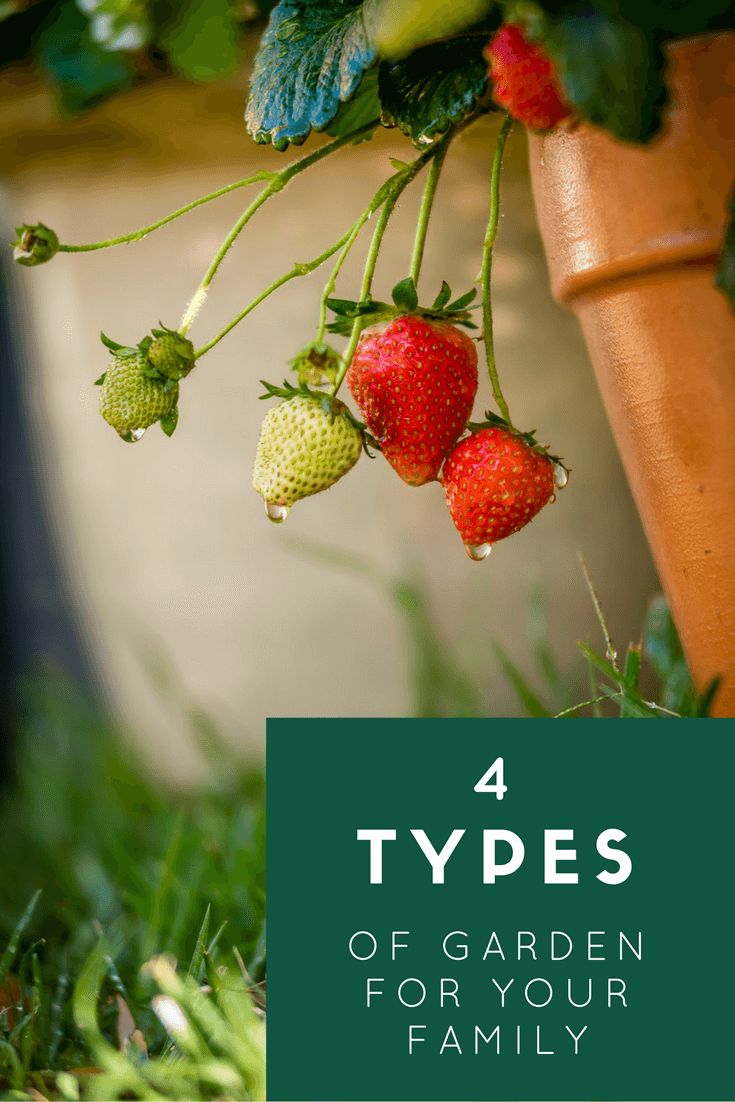 Are you low maintenence, family or sociable? How can you achieve each look? Click to read about the garden goals of 4 different types