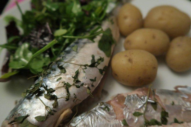 mackerel-whitstable