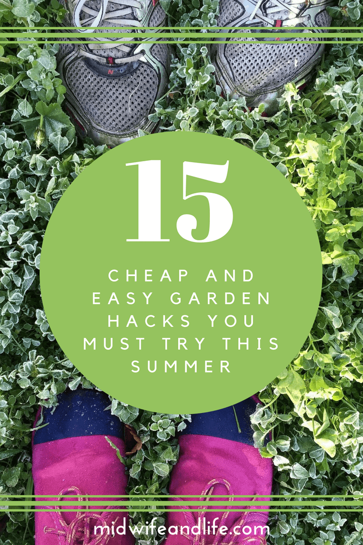 15 Cheap and Easy Garden Hacks You Must Try This Summer