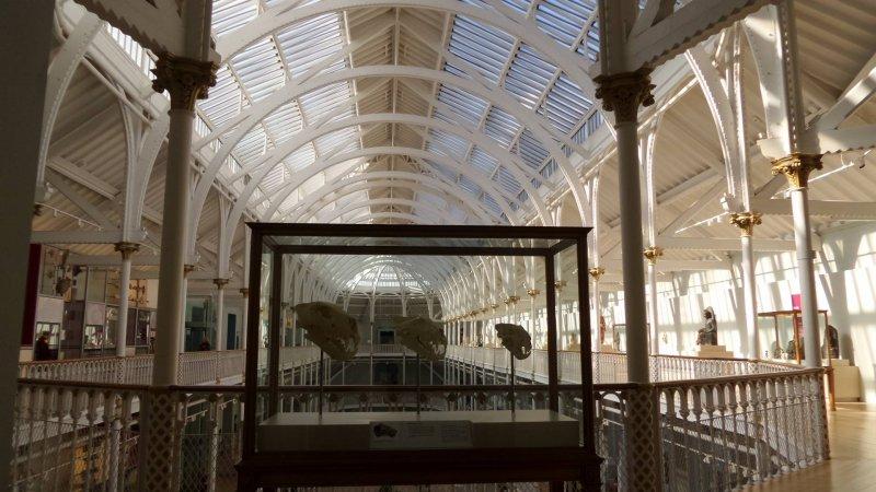 national-museum-scotland-things-to-do-edinburgh