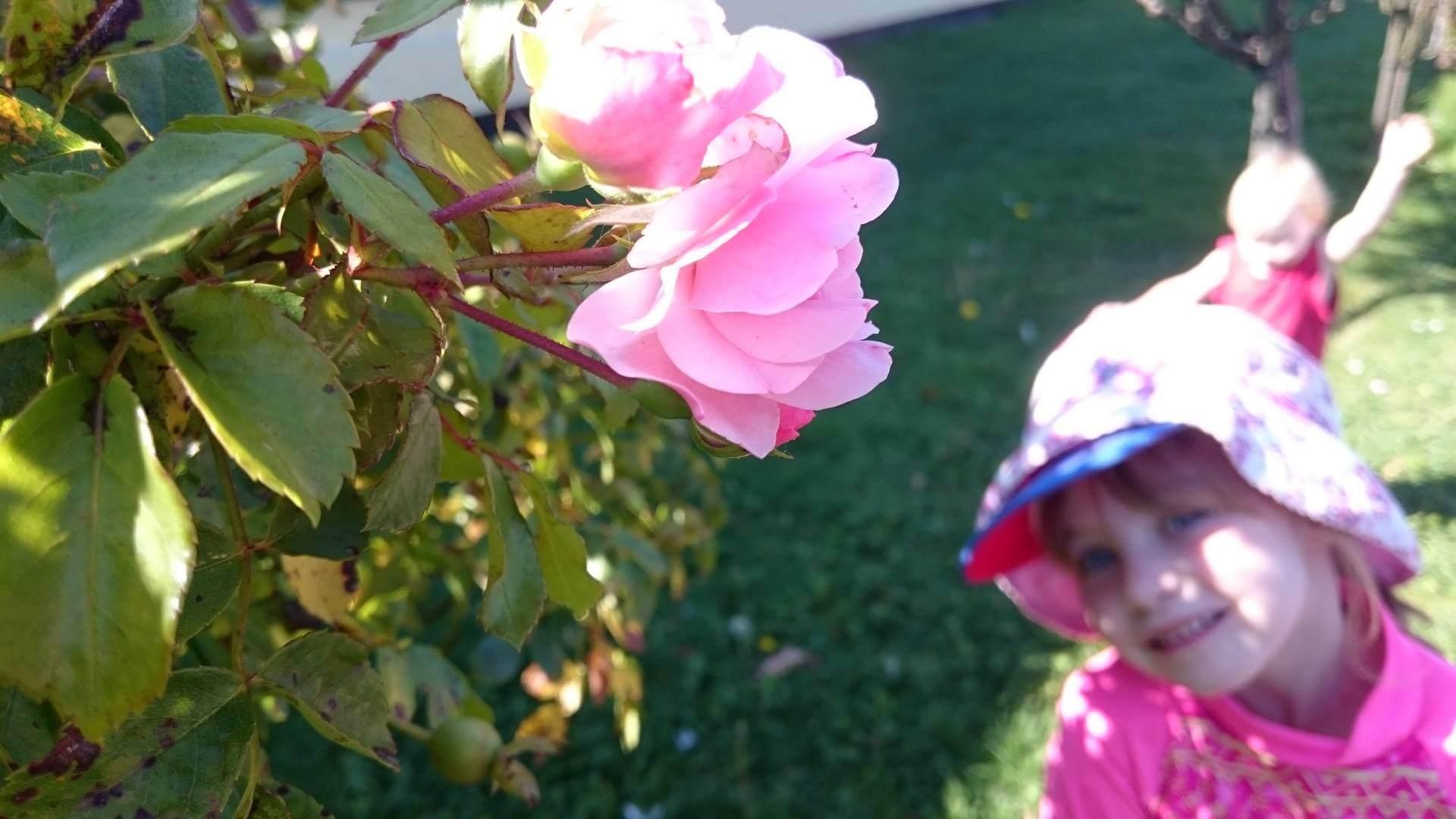 summer-happy-gratitude-grateful-parenting-blog-uk-blogger-top