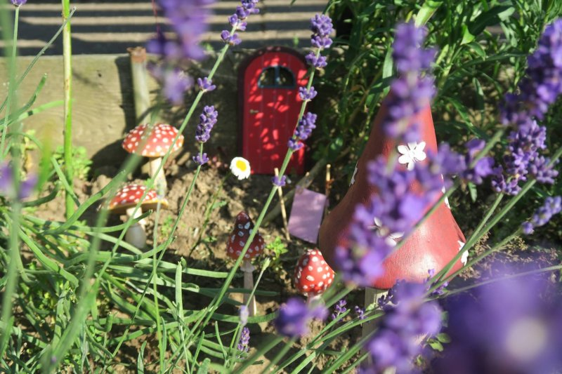 fairy-garden-simple-creation