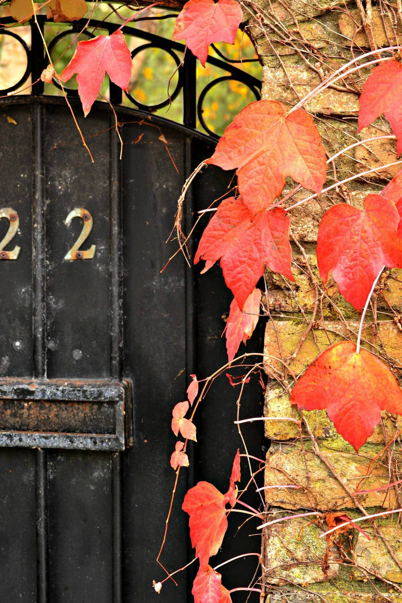 7 Tips For Prepping Your Home For Autumn and Beyond