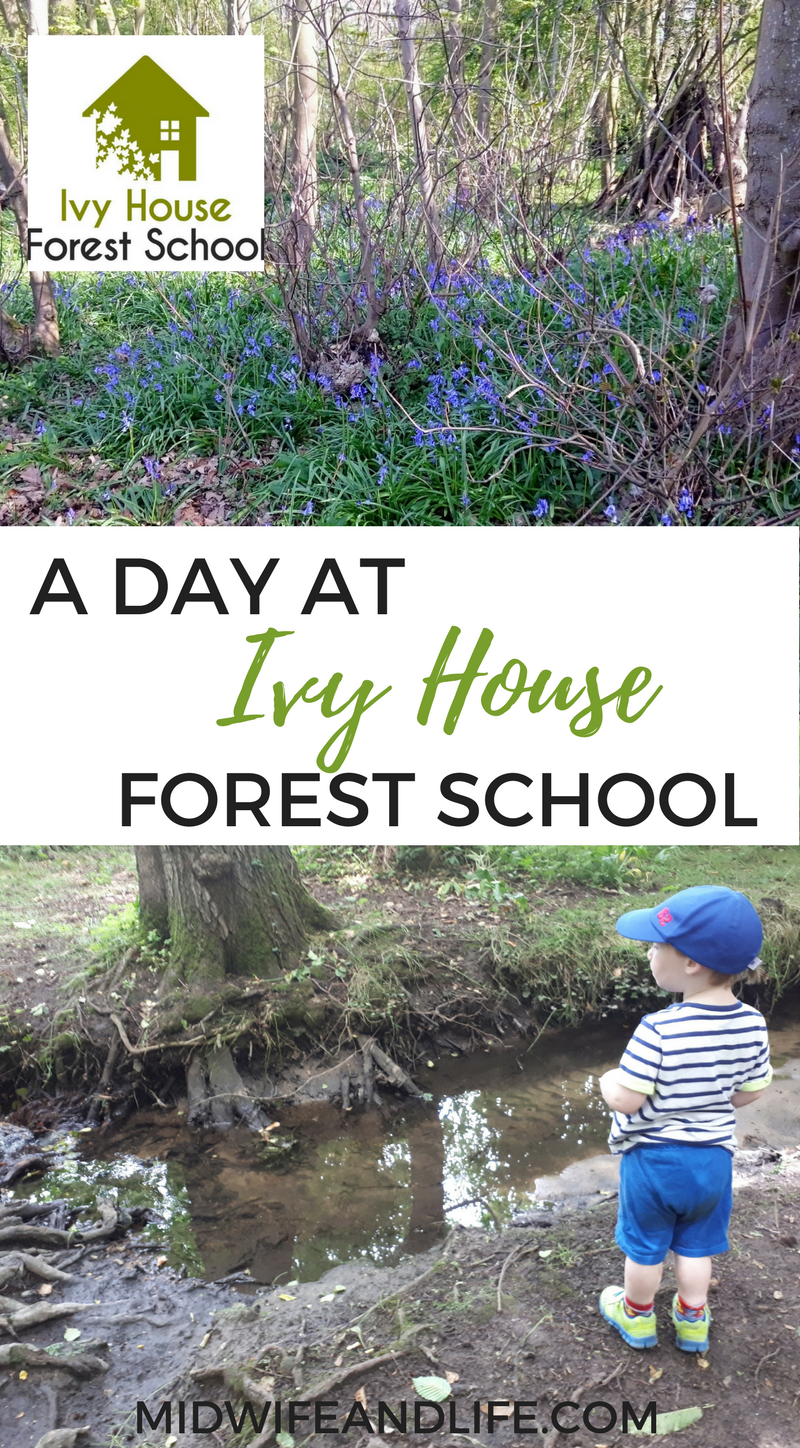 We explore the wonders of the forest guided by experts at Ivy House Forest School, Maidstone - read all about our day and find out about the school!