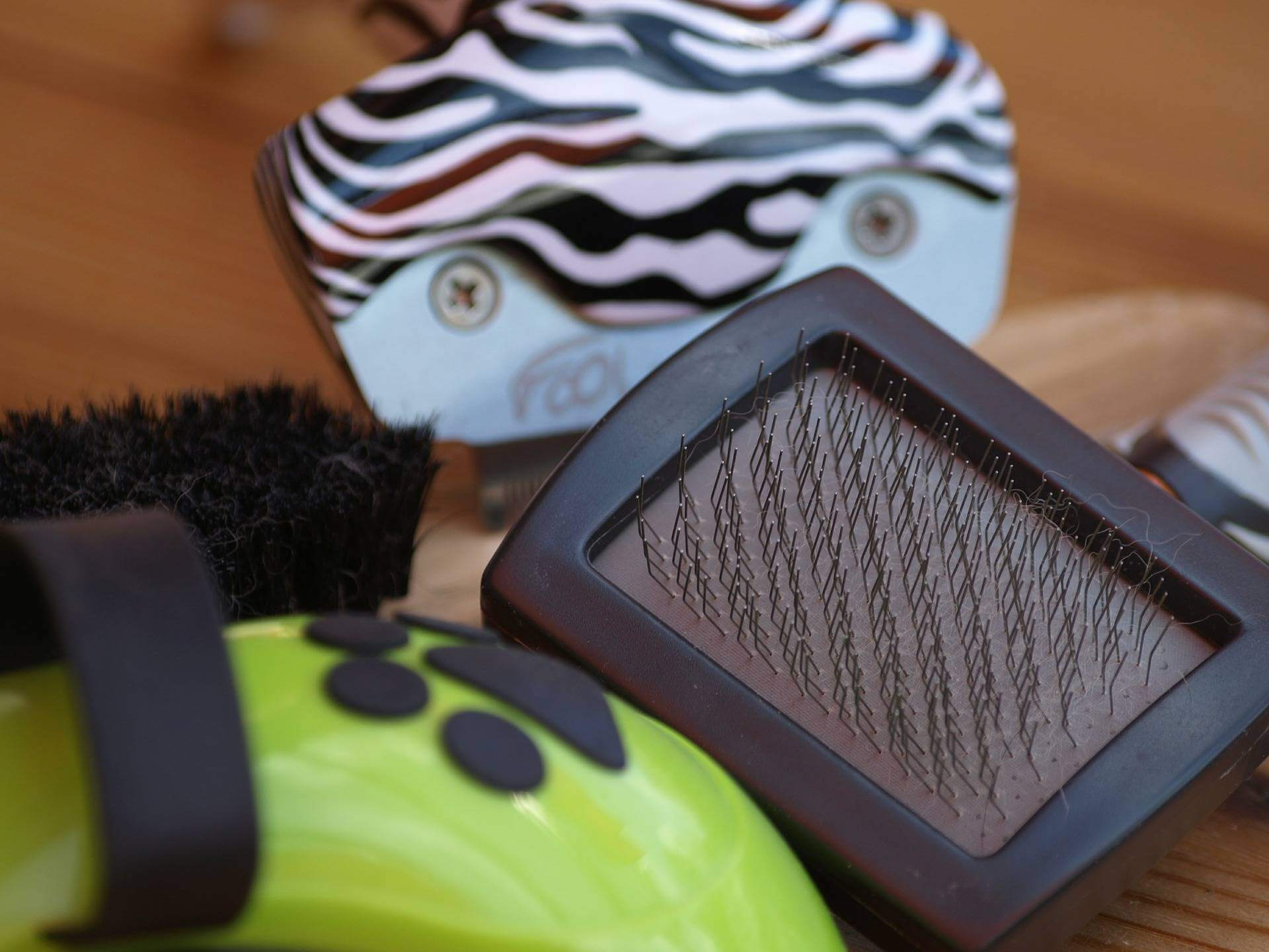home-dog-grooming-tips-hacks-brush-stiff